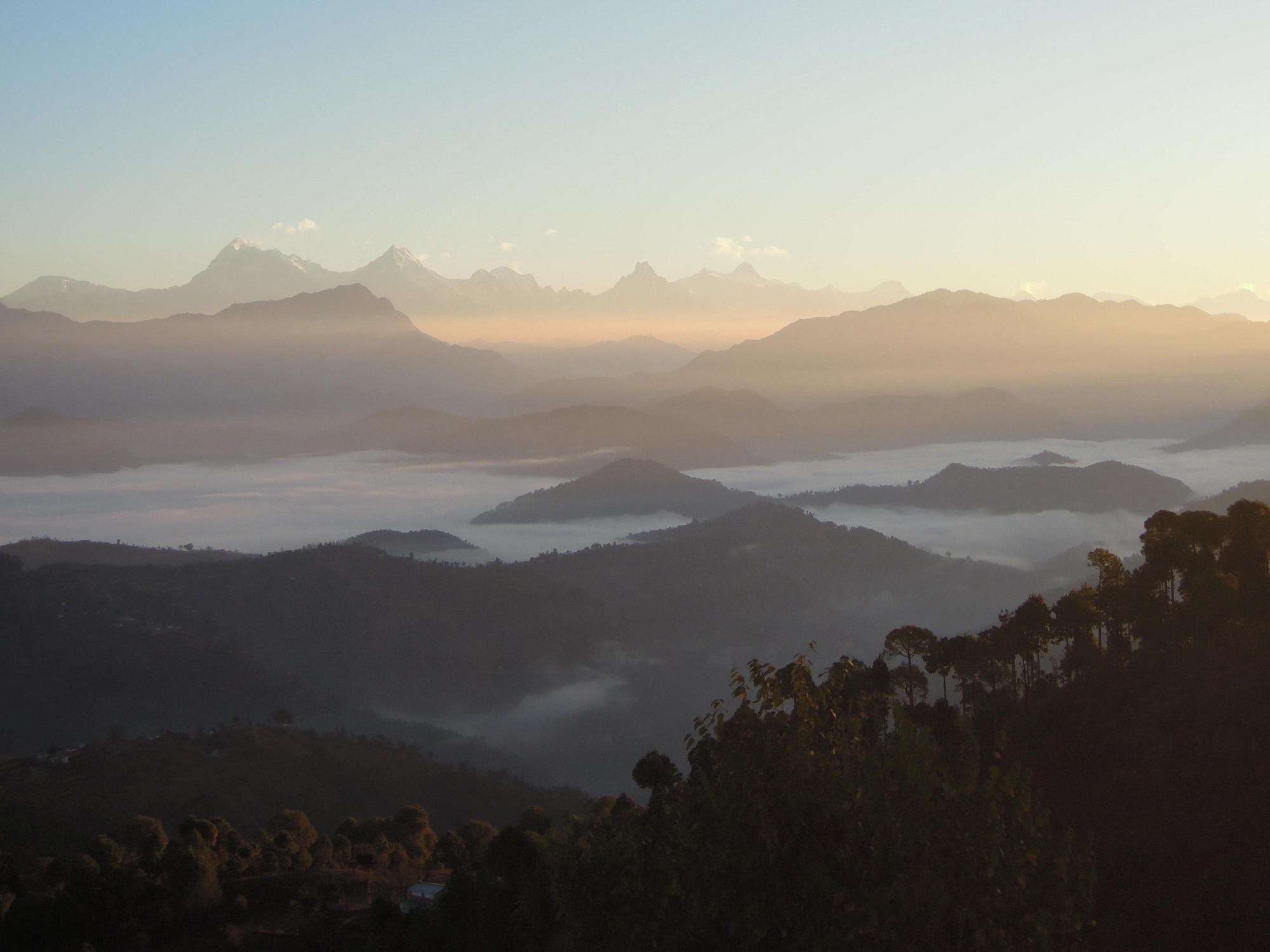paysage montagneux et boisé
