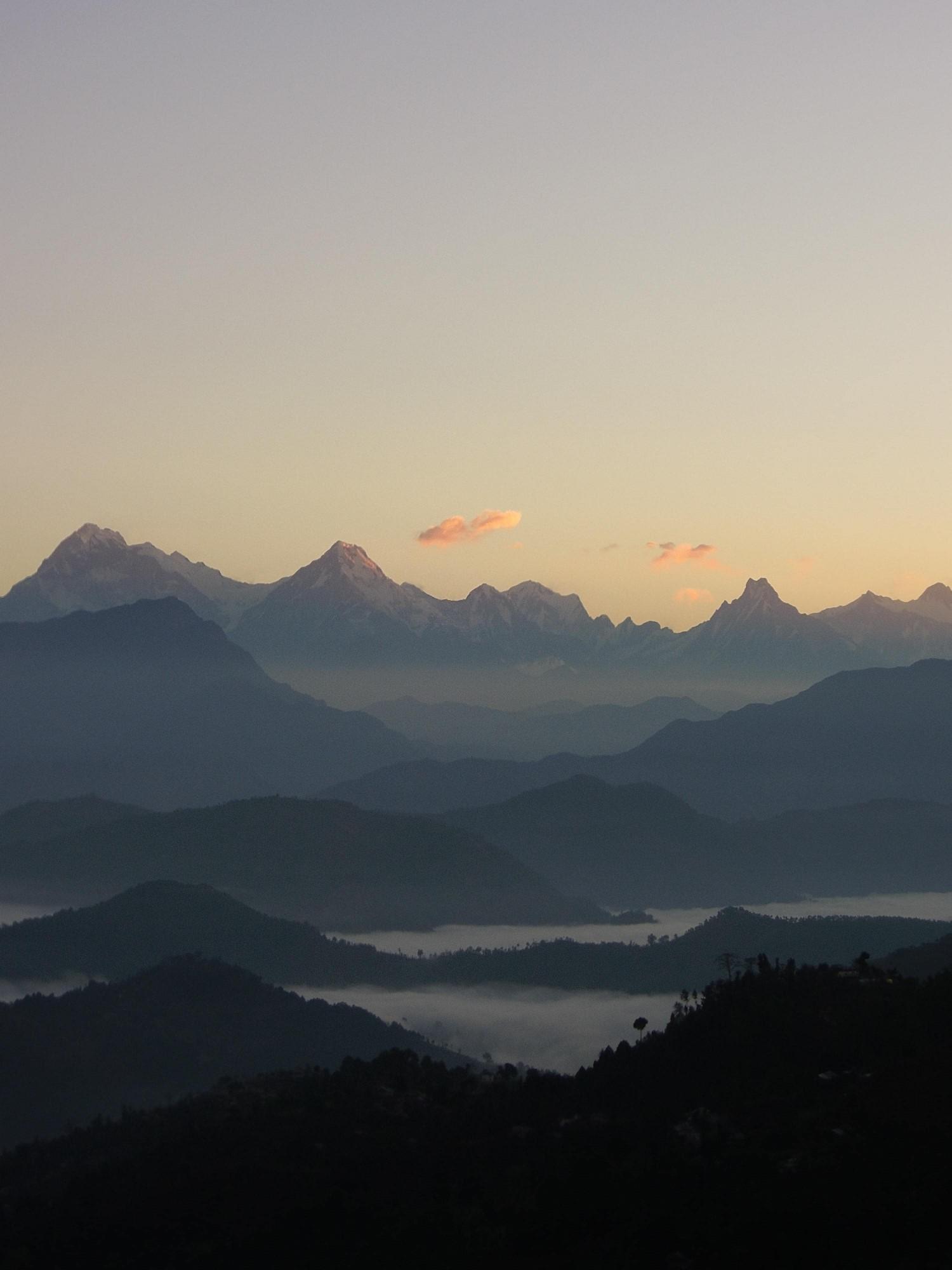 paysage boisé et montagneux en haute altitude