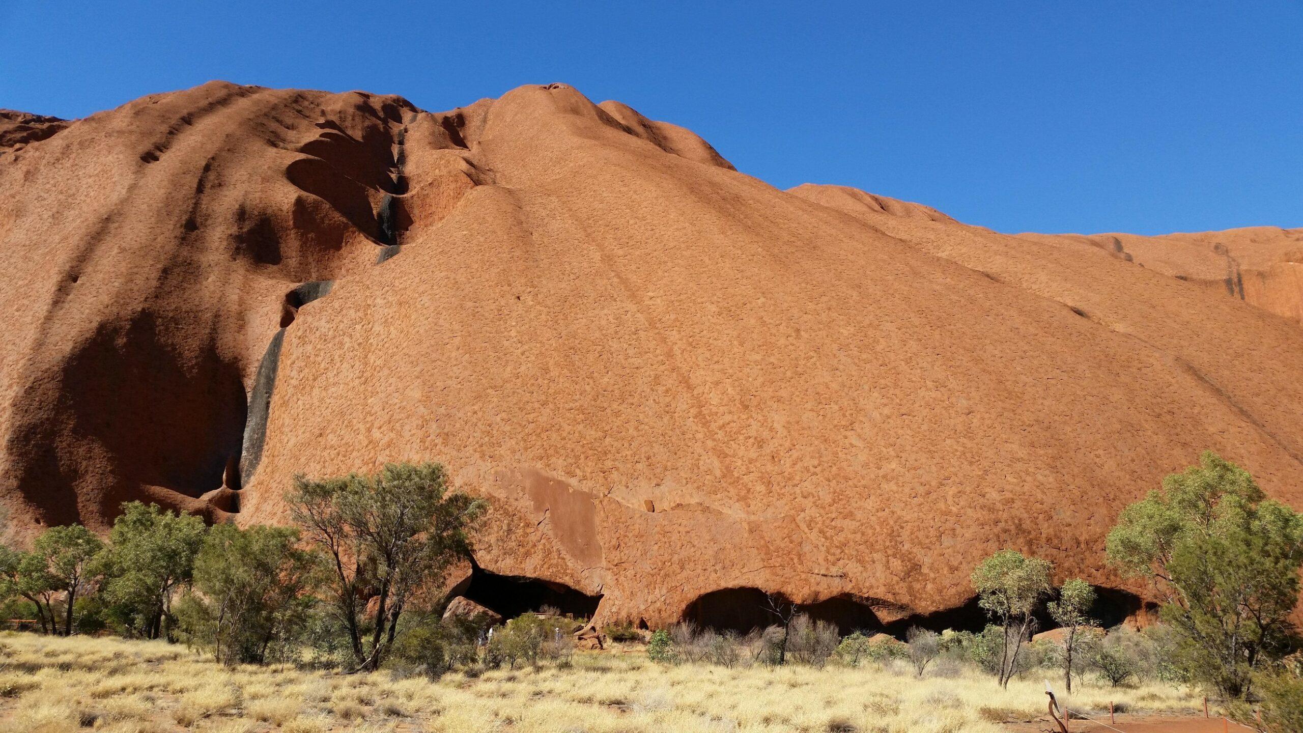 un paysage désertique d'Afrique avec du sable et de la savane