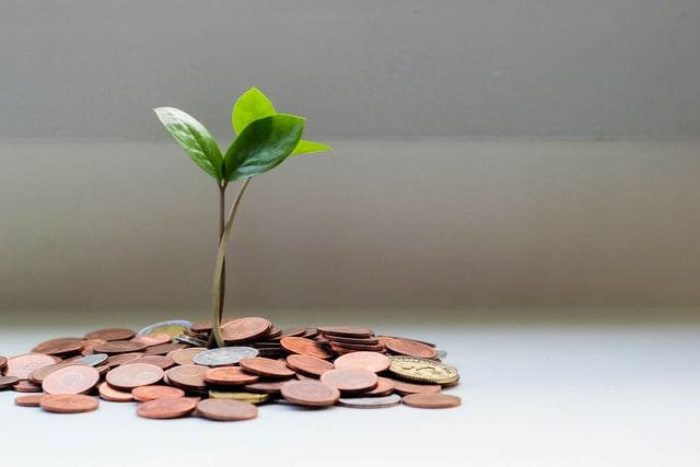 une plante verte sortant d'un tas de pièces, symbole de l'économie verte