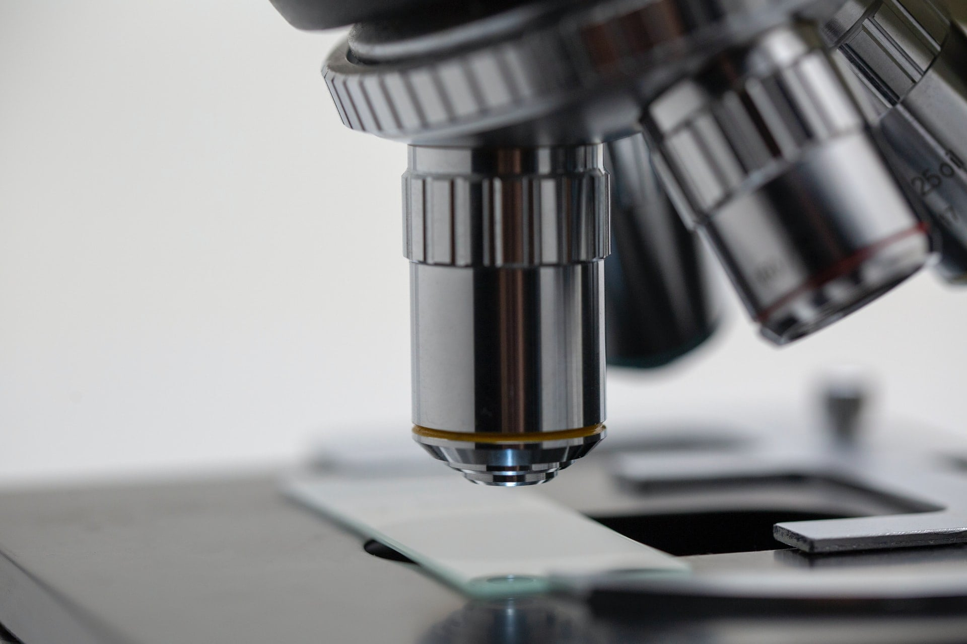 une microscope de SVT observant une plaque